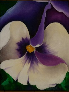 Purple Pansy Sept. 2014